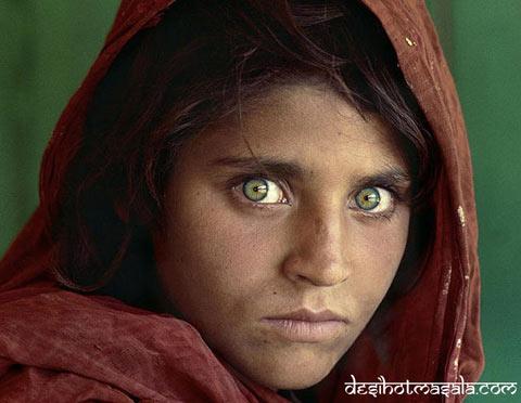 Cô gái người Afghanistan Sharbat Gula có đôi mắt đẹp mê hoặc